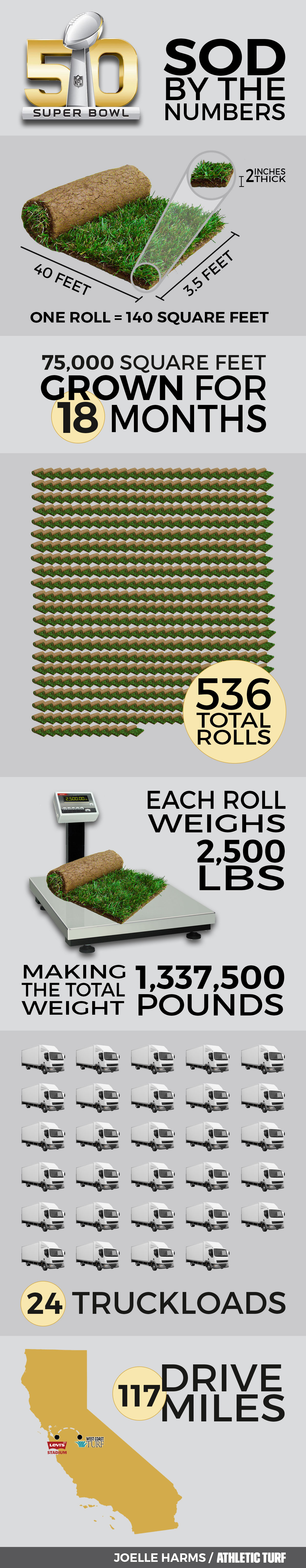Super-Bowl-50-Turf-Infographic